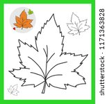 Hand Draw Leaf. Black And Whit...