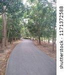 road in the park   Shutterstock . vector #1171372588