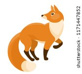 red fox isolated on white... | Shutterstock .eps vector #1171447852