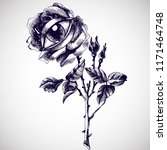 rose and eye. hand drawn vector ... | Shutterstock .eps vector #1171464748