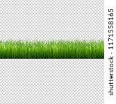 grass border isolated... | Shutterstock .eps vector #1171558165