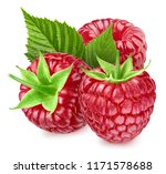 raspberries with leaf isolated... | Shutterstock . vector #1171578688