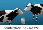 cows drinking milk isolated on white background - stock photo