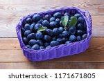 basket full of delicious plums  ... | Shutterstock . vector #1171671805