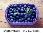 basket full of delicious plums  ... | Shutterstock . vector #1171671808