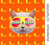 cat pizza lover mood.... | Shutterstock . vector #1171672555