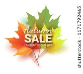 autumn leaves. bright colourful ... | Shutterstock .eps vector #1171792465