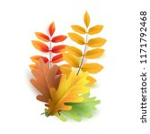 autumn leaves. bright colourful ... | Shutterstock .eps vector #1171792468