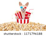 chihuahua dog going to the... | Shutterstock . vector #1171796188