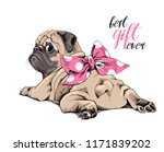 Stock vector adorable beige puppy pug with a pink polka dot bow best gift ever lettering quote humor card t 1171839202