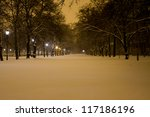 Winter Night In Empty Park In...