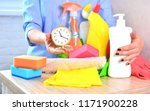 cleaning service for a home  | Shutterstock . vector #1171900228