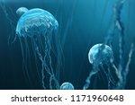 3d illustration background of... | Shutterstock . vector #1171960648