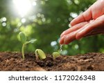 agriculture. growing plants.... | Shutterstock . vector #1172026348