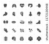 icon set   human anatomy filled ...   Shutterstock .eps vector #1172130448