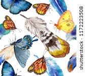 exotic butterflies wild insect... | Shutterstock . vector #1172223508