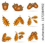 set icons autumn oak acorns... | Shutterstock .eps vector #1172384902