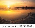 beautiful colorful winter... | Shutterstock . vector #1172433262