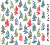 fern frond herbs  tropical... | Shutterstock .eps vector #1172443435