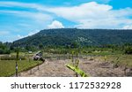 rice terraces in mountains.... | Shutterstock . vector #1172532928