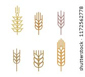 wheat stalk icons set. simple...   Shutterstock .eps vector #1172562778