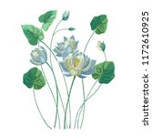 Composition Of Blue Lotus...