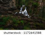 waterfall in altai mountains...   Shutterstock . vector #1172641588