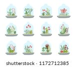 vector collection of cute house ... | Shutterstock .eps vector #1172712385