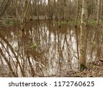 swamp is an area of low lying ... | Shutterstock . vector #1172760625
