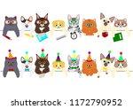 cute kitties border set with... | Shutterstock .eps vector #1172790952