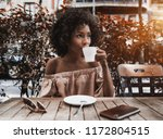 beautiful african american... | Shutterstock . vector #1172804515
