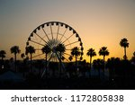 Ferris Wheel And Palm Tree...