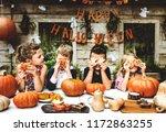 playful kids enjoying a... | Shutterstock . vector #1172863255