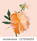a picturesque peony flower.... | Shutterstock .eps vector #1172926255