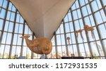 valencia  spain   august 22 ... | Shutterstock . vector #1172931535