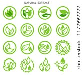 natural extracts through... | Shutterstock .eps vector #1172992222