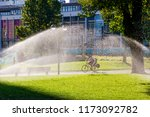 yawn sprinklers are hydrating... | Shutterstock . vector #1173092782