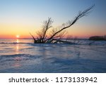 winter landscape with log on... | Shutterstock . vector #1173133942