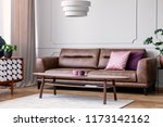pillows on leather couch in... | Shutterstock . vector #1173142162
