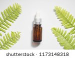 natural beauty cosmetic product ... | Shutterstock . vector #1173148318