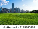 green lawn with city skyline in ... | Shutterstock . vector #1173205828