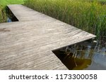 wooden ecological footpath ... | Shutterstock . vector #1173300058