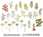 willow and palm tree branches ... | Shutterstock .eps vector #1173394498