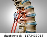 spine therapy and spinal... | Shutterstock . vector #1173433015