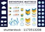orthopedic mattress set.... | Shutterstock .eps vector #1173513208