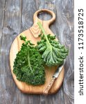 fresh green curly kale leaves... | Shutterstock . vector #1173518725