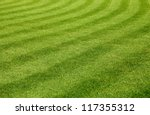 beautiful green grass texture | Shutterstock . vector #117355312