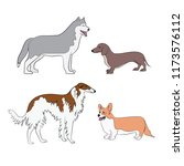 image of different breeds of...   Shutterstock .eps vector #1173576112