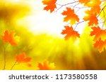 autumn landscape with bright... | Shutterstock . vector #1173580558