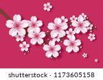 beautiful sakura on pink... | Shutterstock . vector #1173605158